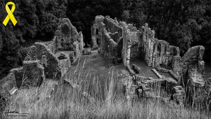 Ruïnes del castell d'Okehampton (West Devon, England) b