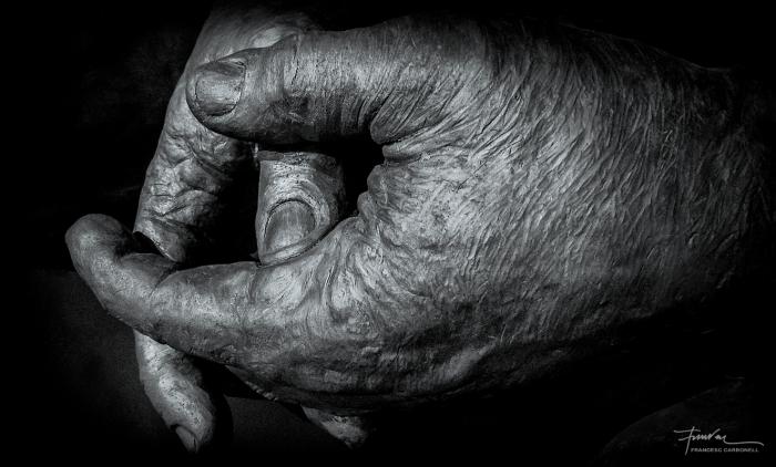 Carlets Detall de l'escultura en ceràmica negra de Javier Garcés