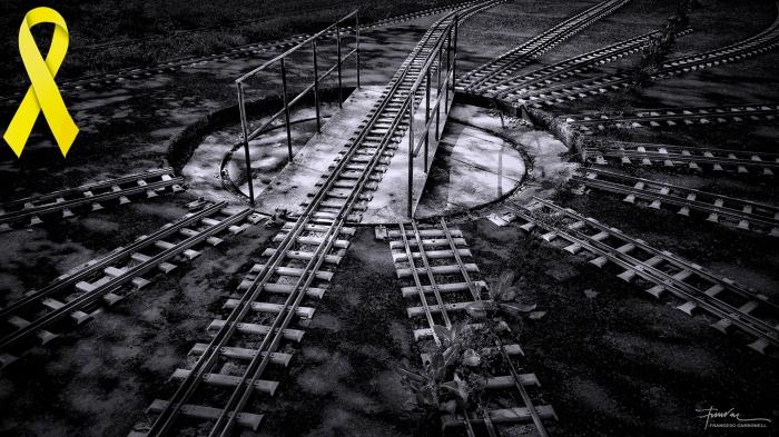 Pont giratori del tren petit de Fornels b