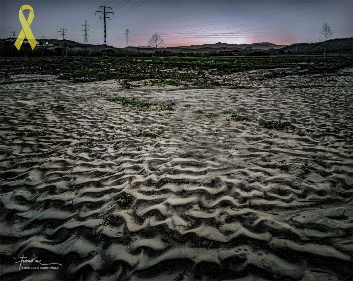 Pòsits i sediments 5b