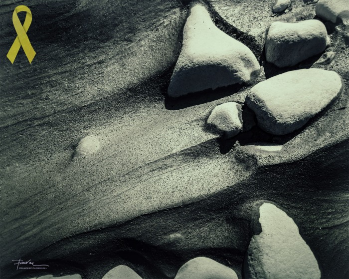 Pòsits i sediments 12b